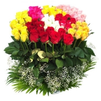 100 Mixed Roses basket